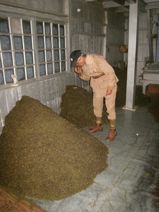 Rajah inspecting tea leaves