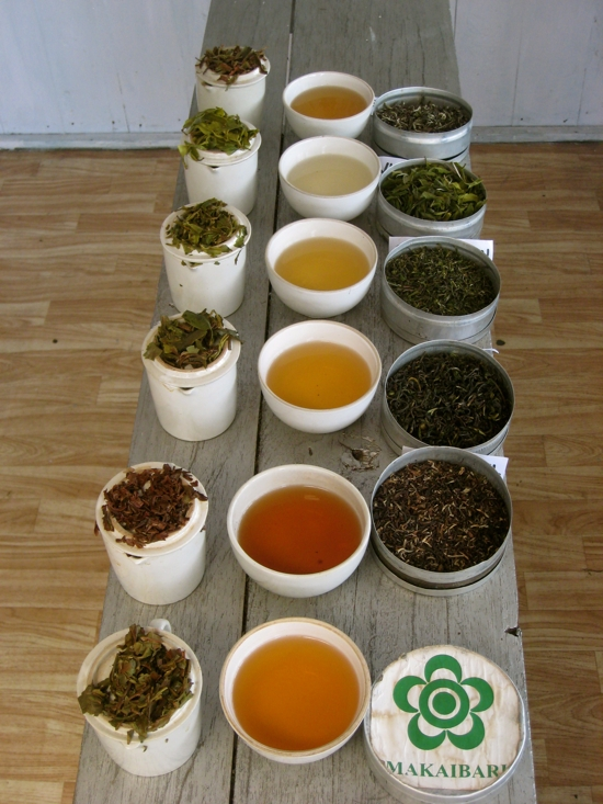 Tea Flushes for Tasting