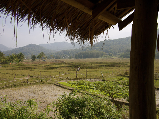 A view of Living Land Farm, Luang Prabang, Laos