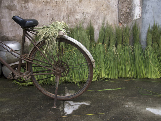 Bicycle with threshed rice stalks