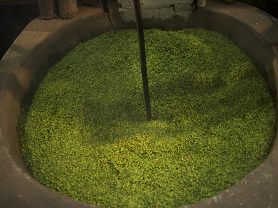 Young green rice kernels being roasted