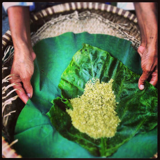 Young green rice, com, for sale in Hanoi